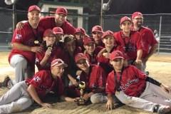 Les Cobras de Beauport Pee-Wee AA champions des séries