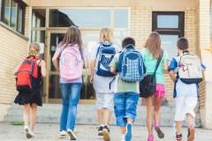 Quoi de neuf dans nos écoles primaires?