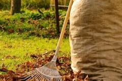Grand ménage automnal : Début des opérations de nettoyage des rues