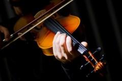 Virtuoses du violon regroupés