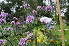Le Portail agrémente sa thérapie de jardinage