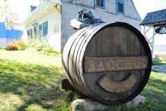 Relève assurée au vignoble Isle de Bacchus