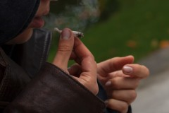 Légalisation de la marijuana : la Côte, prête pour le pot?
