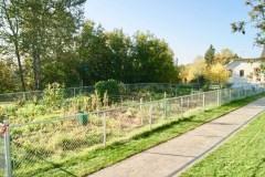 Jardin communautaire à Saint-Ferréol-les-Neiges