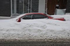La pire tempête de l'hiver n'a laissé personne indifférent