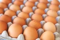 La SAQ distribue 22 176 cocos à Moisson Québec pour Pâques