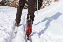 Réfection des pistes de ski de fond du Mont-Bélair
