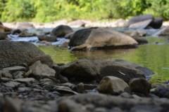 Parcours de découvertes aux abords des rivières de Québec