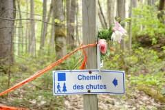 Le Mont-Sainte-Anne repense à sa sécurité