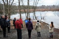 Le G3E visite les milieux humides du Centre de plein air de Beauport avant son assemblée
