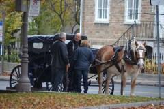 Pas de calèches à Québec jeudi après-midi