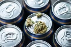 Fin de la prohibition de l'alcool et légalisation du cannabis : une comparaison qui en dit long