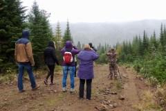 Forêt Montmorency : À la chasse sans armes