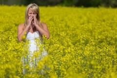 Les allergies de l'intérieur et de l'extérieur
