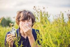 Éliminer l'herbe à poux